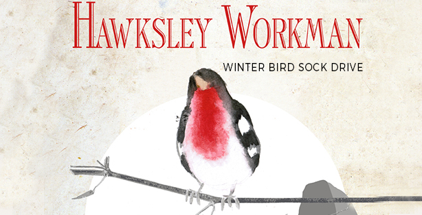 Winter bird sock drive